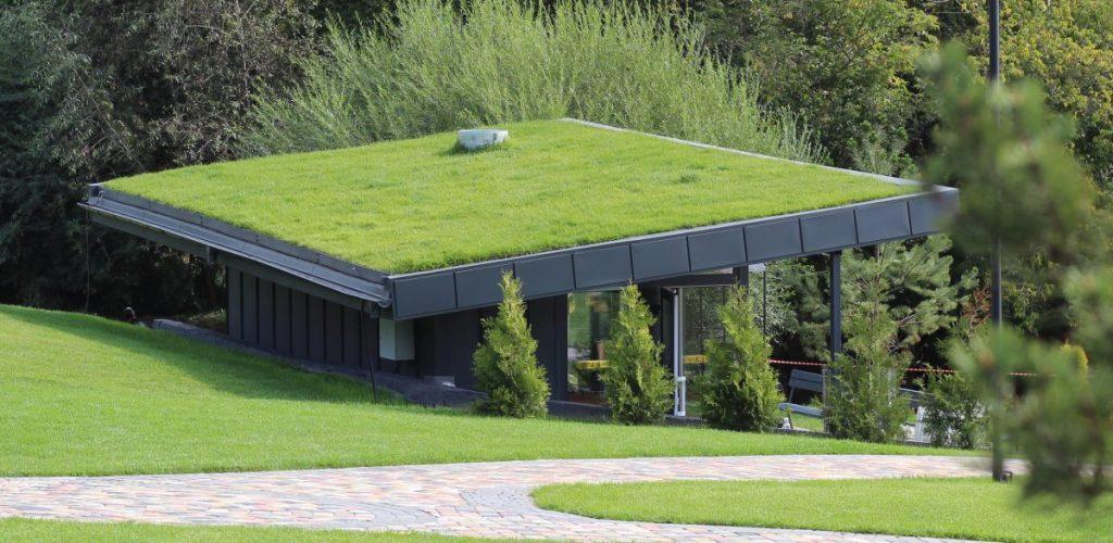 techo verde dreyser